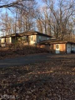 38034 Lodge Road, Leetonia, OH 44431 (MLS #4242671) :: Krch Realty