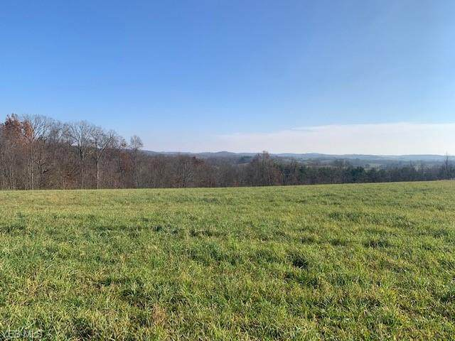 State Route 83, Millersburg, OH 44654 (MLS #4242821) :: Select Properties Realty