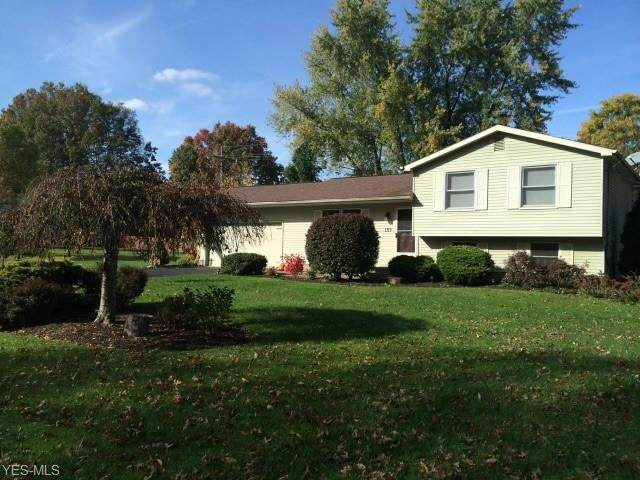 105 Lakeview Road, Niles, OH 44446 (MLS #4246397) :: The Jess Nader Team | RE/MAX Pathway
