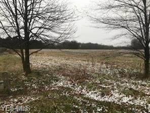State Route 14, East Palestine, OH 44413 (MLS #4247276) :: TG Real Estate