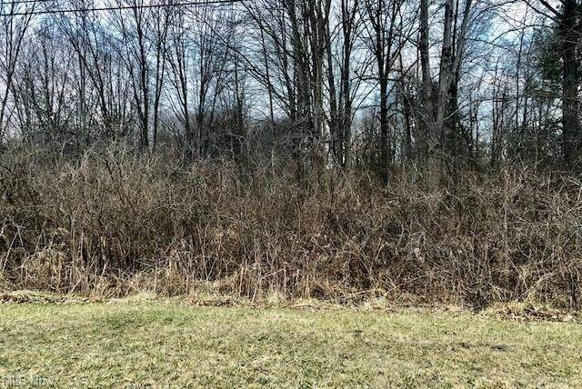 Claus Rd Road, Vermilion, OH 44089 (MLS #4249284) :: RE/MAX Trends Realty