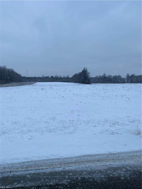 Miller Road, Lowellville, OH 44436 (MLS #4251088) :: The Holly Ritchie Team