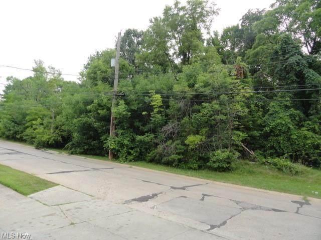 VL E 141st Street, Garfield Heights, OH 44125 (MLS #4251780) :: Krch Realty