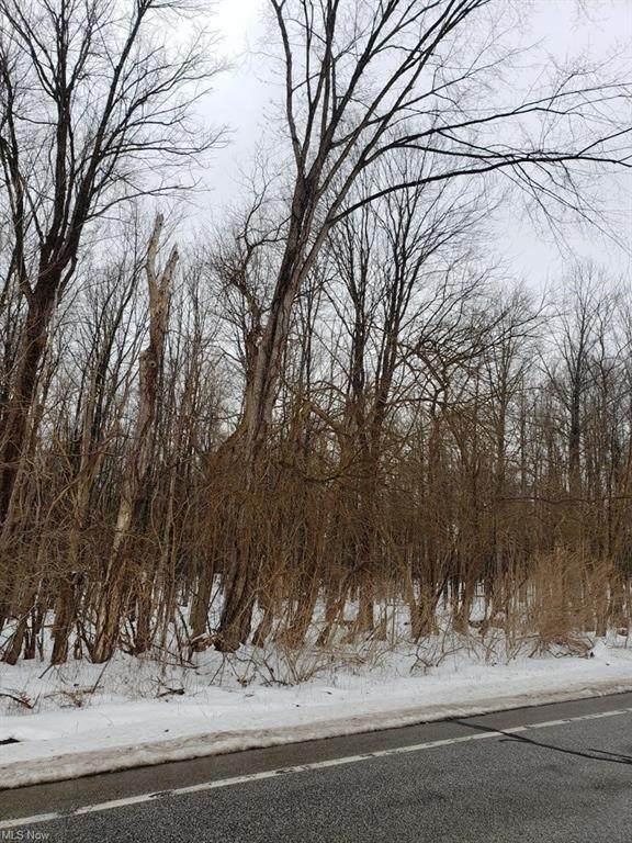 13790 Auburn Road, Newbury, OH 44065 (MLS #4257350) :: The Holden Agency