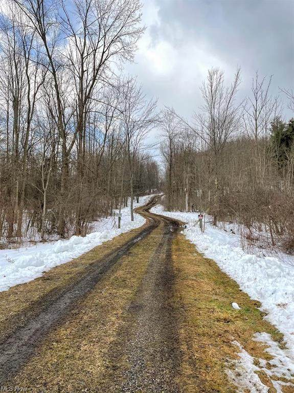 10690 Butternut Road, Munson, OH 44024 (MLS #4258639) :: RE/MAX Edge Realty
