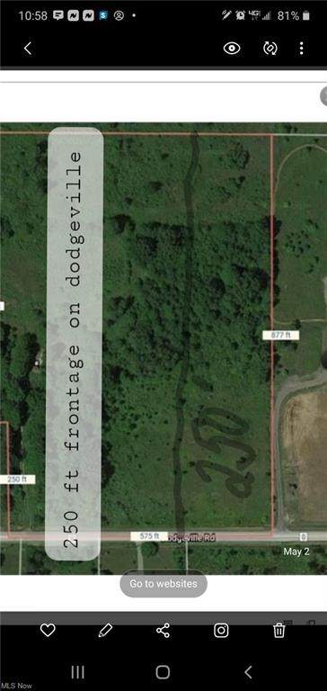 V/L Dodgeville (Near Rt 45), Rome, OH 44085 (MLS #4259772) :: RE/MAX Trends Realty