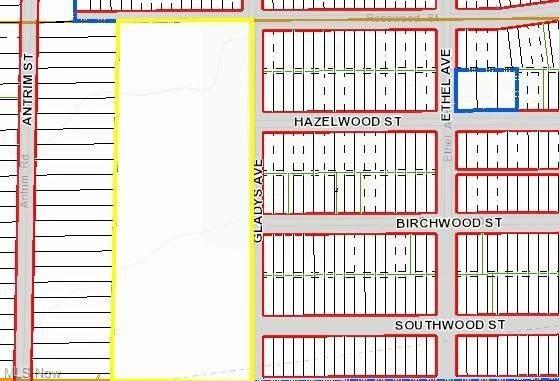 V/L Rosewood Street, Elyria, OH 44035 (MLS #4259871) :: The Jess Nader Team | RE/MAX Pathway