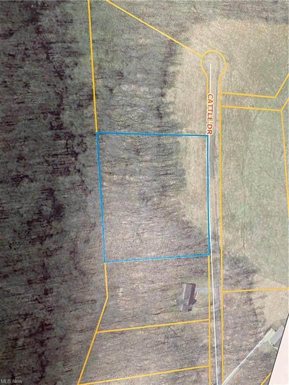 0 Cattle (Lot 4) Drive, Barnesville, OH 43713 (MLS #4261381) :: The Kaszyca Team