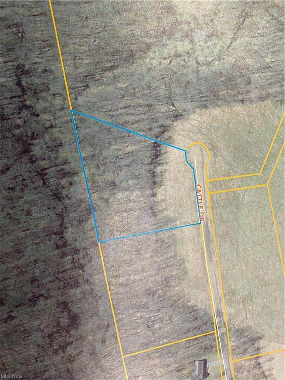 0 Cattle (Lot 5) Drive, Barnesville, OH 43713 (MLS #4261397) :: Keller Williams Chervenic Realty