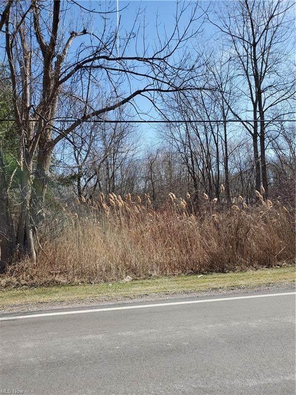 Countyline Road, Geneva, OH 44041 (MLS #4261810) :: The Kaszyca Team
