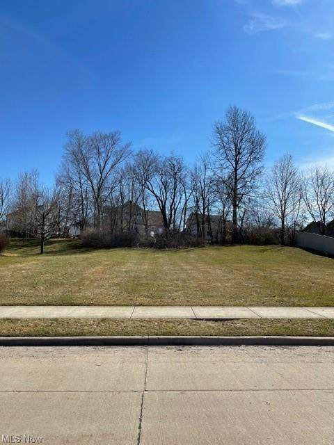 Cyprus Drive SE, Massillon, OH 44646 (MLS #4261943) :: RE/MAX Trends Realty