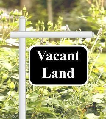 5015 Benefit Avenue, Ashtabula, OH 44004 (MLS #4265503) :: The Holden Agency