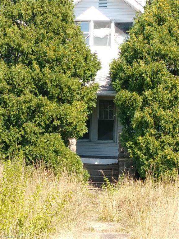 979 N State Route 19, Oak Harbor, OH 43449 (MLS #4267346) :: The Holden Agency
