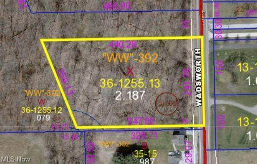 Wadsworth Road, Marshallville, OH 44645 (MLS #4269985) :: RE/MAX Trends Realty