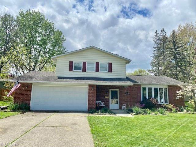 294 Baird Avenue, Wadsworth, OH 44281 (MLS #4277312) :: RE/MAX Edge Realty