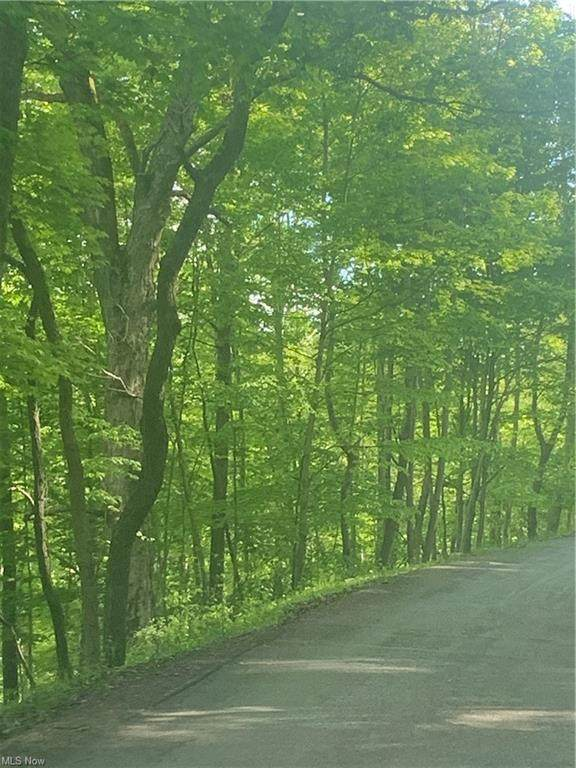 0 Chesterville Road, Mineral Wells, WV 26150 (MLS #4277862) :: Select Properties Realty