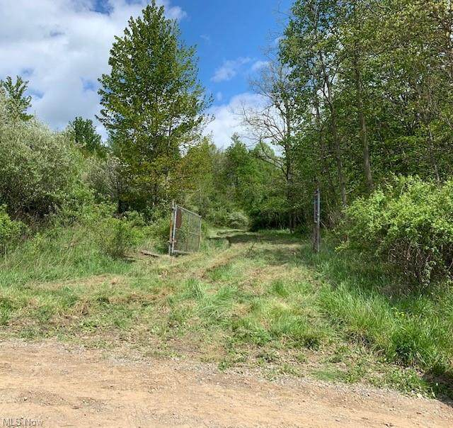 17881 Horse Shoe Bend Road E, Newcomerstown, OH 43832 (MLS #4277975) :: The Kaszyca Team