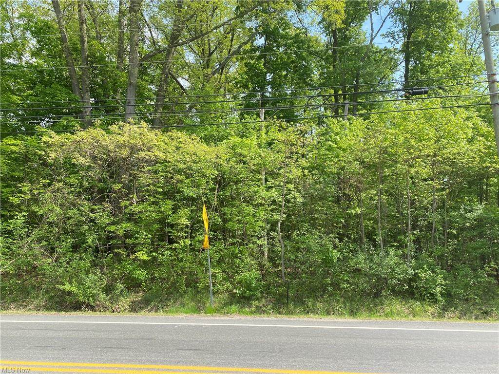 56 Twinsburg Road - Photo 1