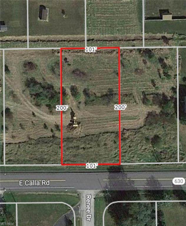 4902 E Calla Road, New Middletown, OH 44442 (MLS #4287110) :: RE/MAX Trends Realty