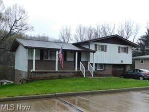 721 E Fernwood Drive, Toronto, OH 43964 (MLS #4291103) :: The Holden Agency