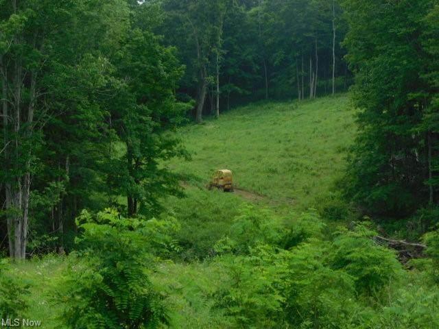 Squirrel, Steubenville, OH 43953 (MLS #4291684) :: The Crockett Team, Howard Hanna