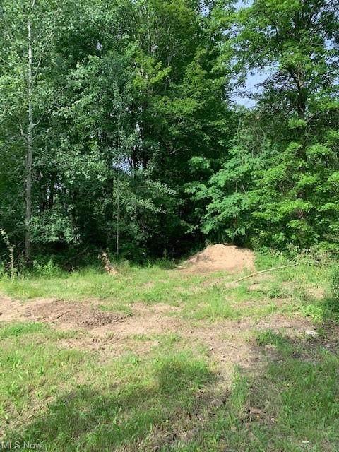 VL Tillotson Road, Ashtabula, OH 44004 (MLS #4292427) :: The Jess Nader Team | REMAX CROSSROADS