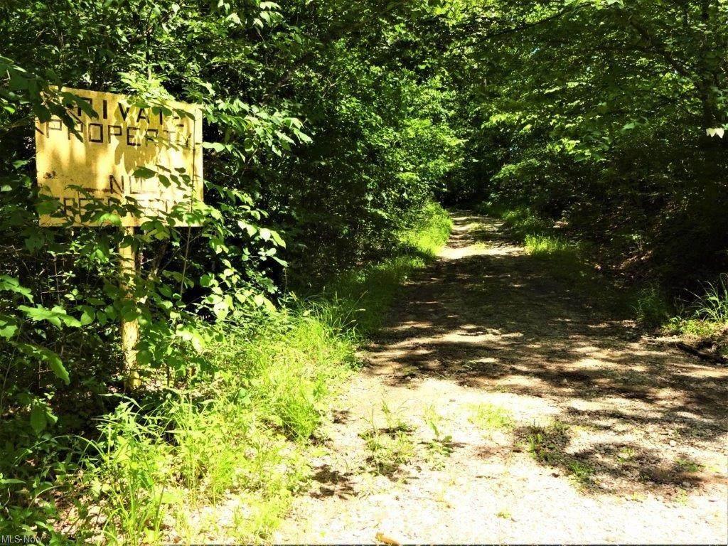 3874 Mt Olive Ridge Road - Photo 1