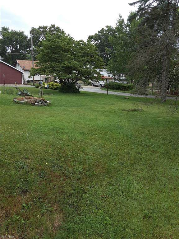 V/L Durst Boulevard, Coventry, OH 44319 (MLS #4293956) :: The Jess Nader Team | REMAX CROSSROADS