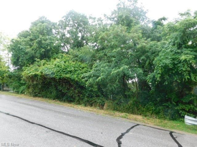 Rosemont, Steubenville, OH 43952 (MLS #4294097) :: The Jess Nader Team | REMAX CROSSROADS