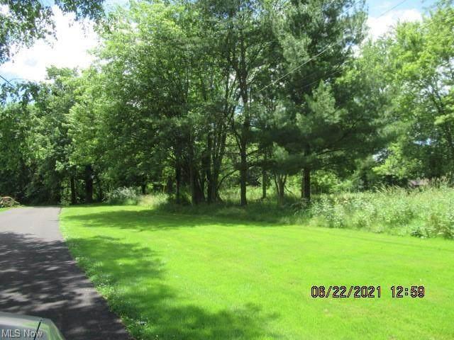Richland Avenue, Norton, OH 44203 (MLS #4294303) :: Tammy Grogan and Associates at Keller Williams Chervenic Realty