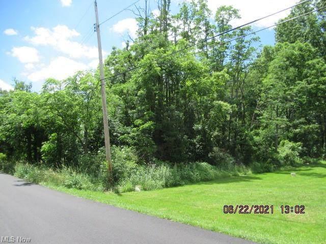 Richland Avenue, Norton, OH 44203 (MLS #4294309) :: The Jess Nader Team | REMAX CROSSROADS