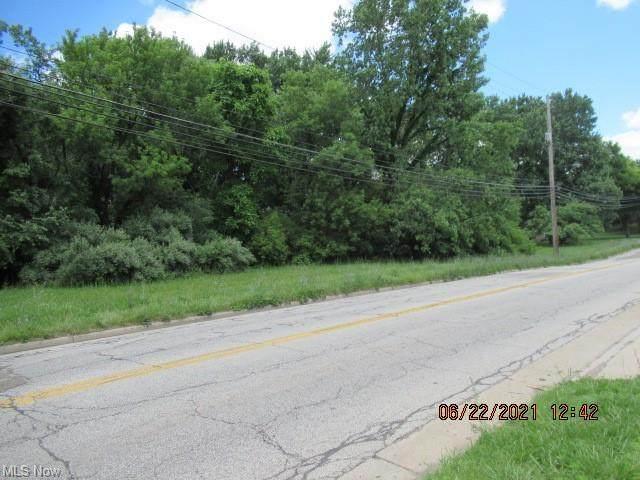 2nd Street, Barberton, OH 44203 (MLS #4294320) :: TG Real Estate