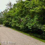 Curry Lane, Chagrin Falls, OH 44023 (MLS #4295085) :: The Art of Real Estate