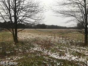 State Route 14, East Palestine, OH 44413 (MLS #4296072) :: Tammy Grogan and Associates at Keller Williams Chervenic Realty
