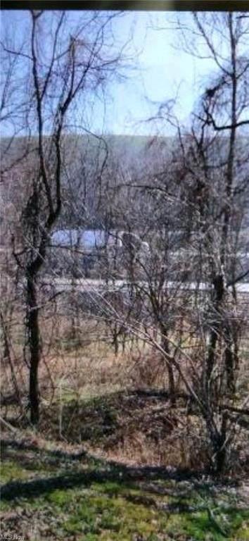 State Route 800, Hendrysburg, OH 43713 (MLS #4296430) :: Keller Williams Chervenic Realty