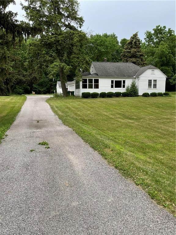 1739-1751 W Jackson, Painesville Township, OH 44077 (MLS #4298126) :: Tammy Grogan and Associates at Keller Williams Chervenic Realty