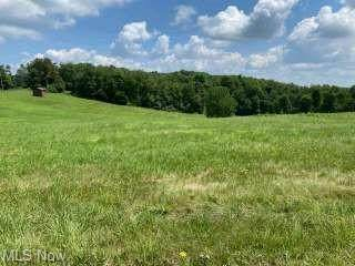 10222 Stookesberry Road, Lisbon, OH 44432 (MLS #4301748) :: The Holly Ritchie Team