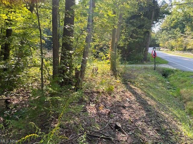 3604 Brush Road, Richfield, OH 44286 (MLS #4302630) :: The Holden Agency