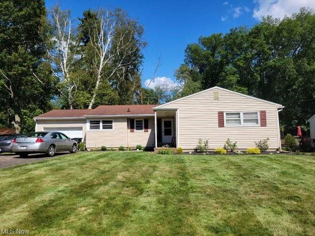 179 Parkview Avenue, Wadsworth, OH 44281 (MLS #4304582) :: The Jess Nader Team | REMAX CROSSROADS