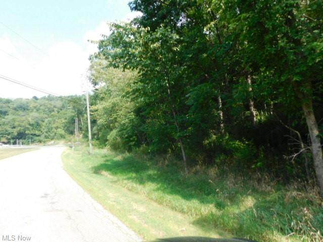 County Road 56, Toronto, OH 43964 (MLS #4304814) :: The Holden Agency