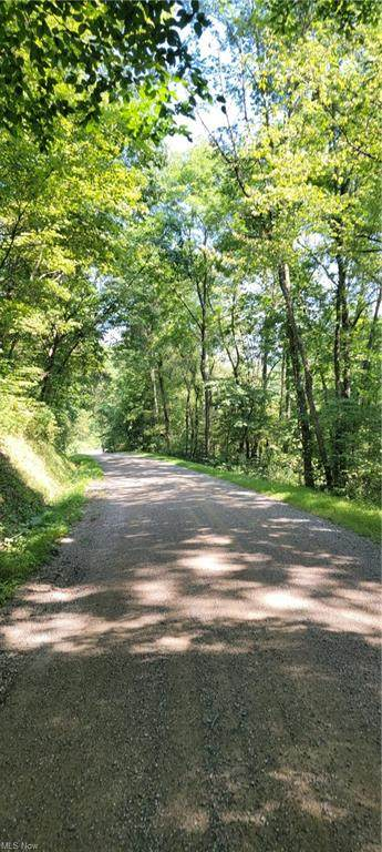Indian Road, Newcomerstown, OH 43832 (MLS #4306400) :: TG Real Estate