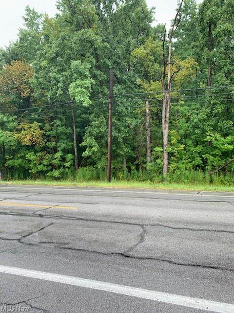 V/L French Creek Road, Sheffield Village, OH 44054 (MLS #4309601) :: The Holden Agency