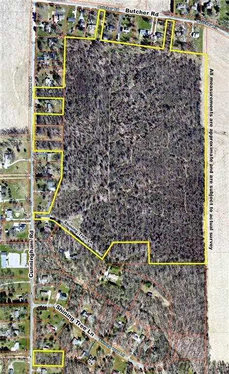 Cunningham Road, Salem, OH 44460 (MLS #4309801) :: TG Real Estate