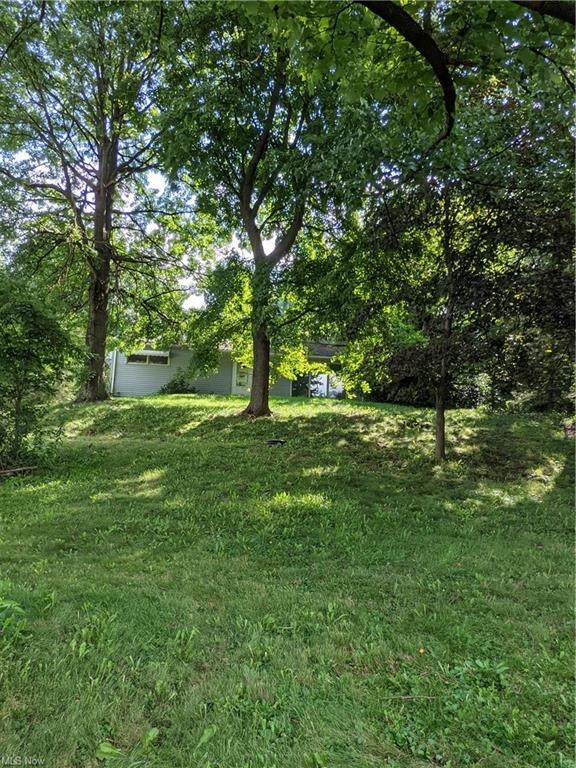 2361 Massillon Road, Akron, OH 44312 (MLS #4309925) :: The Holden Agency