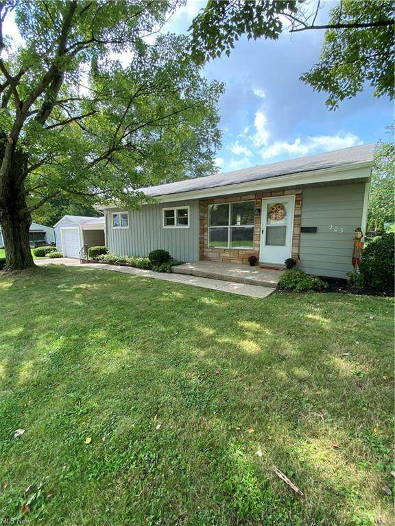 203 Tolbert Street, Wadsworth, OH 44281 (MLS #4312145) :: The Holden Agency
