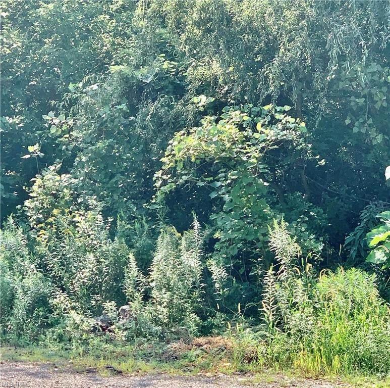 Pleasant Lake Drive - Photo 1