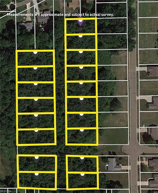 Western Avenue, Alliance, OH 44601 (MLS #4313902) :: Keller Williams Chervenic Realty