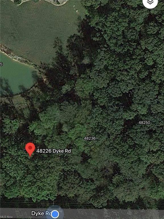 48236 Dyke Road, Negley, OH 44441 (MLS #4314081) :: The Kaszyca Team
