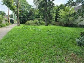 512 N 8th Street, Coshocton, OH 43812 (MLS #4314497) :: TG Real Estate
