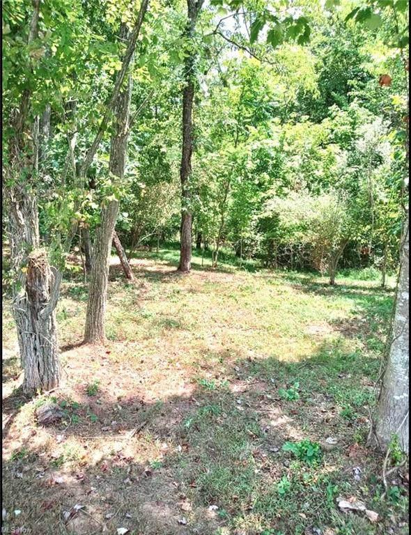 Lot 21 Stonegate Estates, Ravenswood, WV 26164 (MLS #4315432) :: The Jess Nader Team | REMAX CROSSROADS